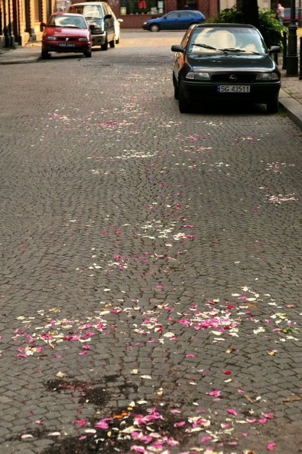 wedding traces