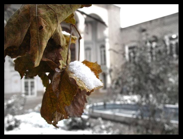 last day,autumn,snow