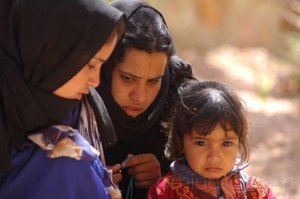 Fiori del Sinai