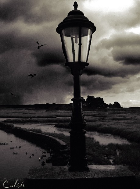 ireland, northcoast, lamp, birds, quiet