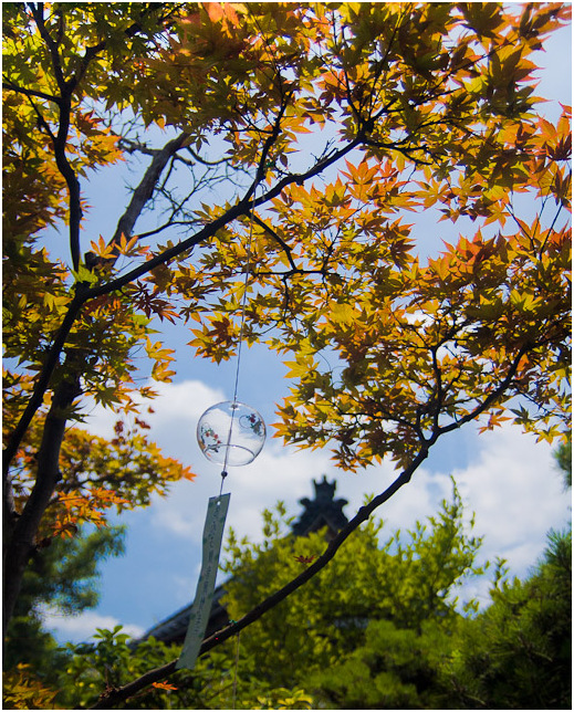 Japan wind chime festival