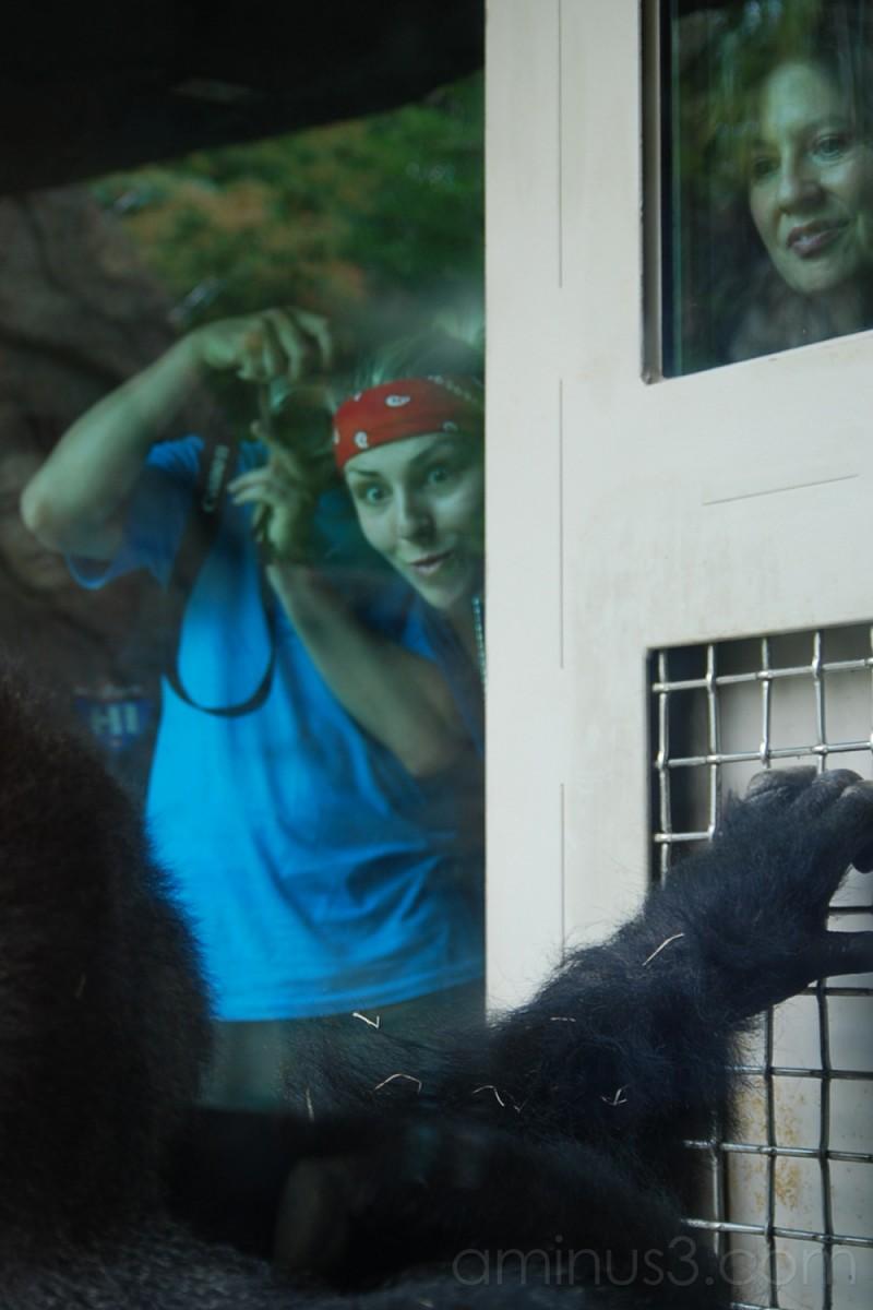 Dallas Zoo: Faces