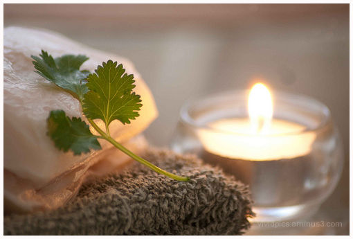 Soap + Candle +  Cilantro