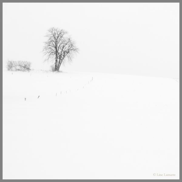 Contre vent et neige...
