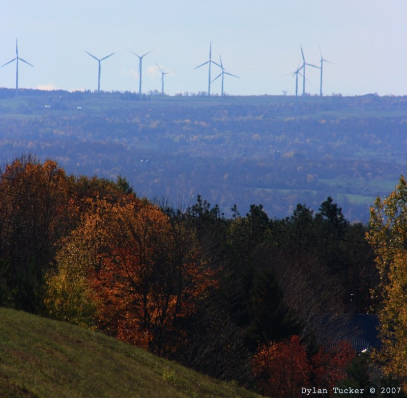 fall foliage with wind turbines in the background