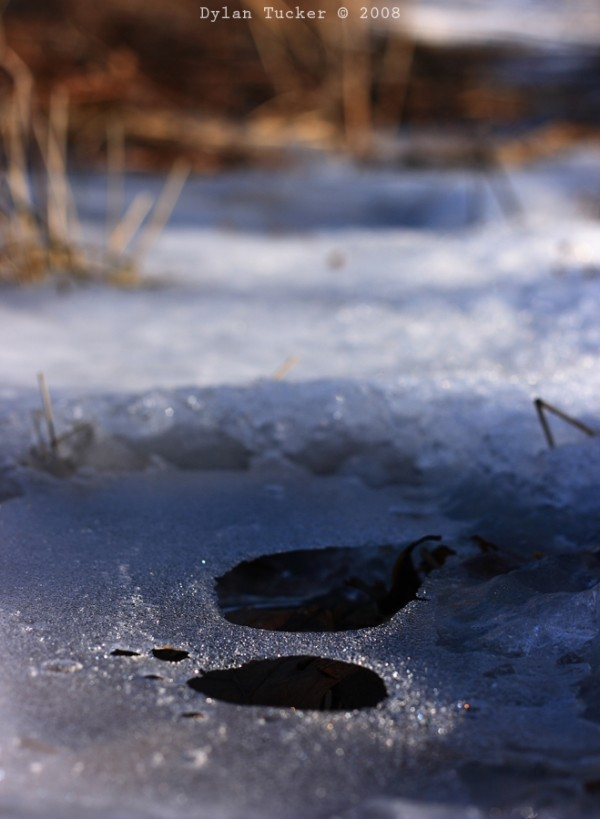 Holes melting in ice