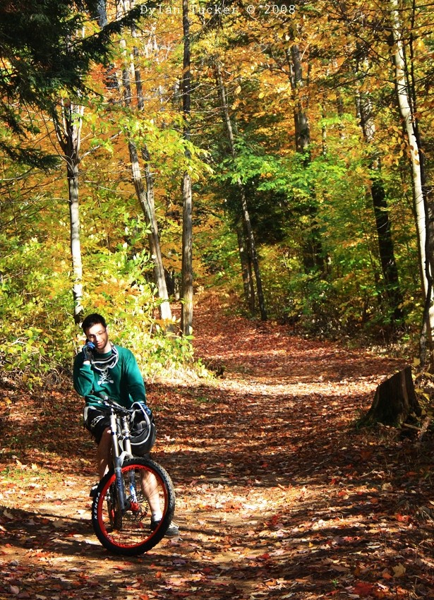 making a phone call while biking in the fall leave