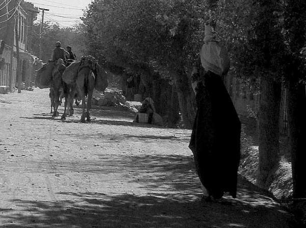 rural afghanistan