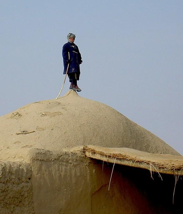 turkmen shephard boy