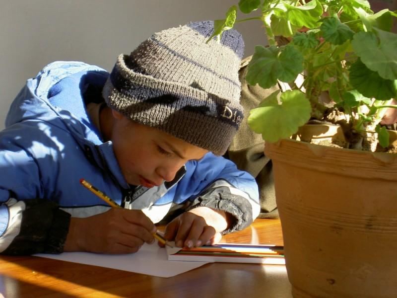 afghan boy