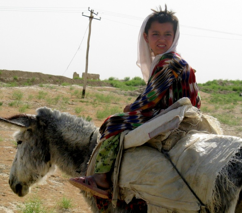 Turkmen girl on a donkey