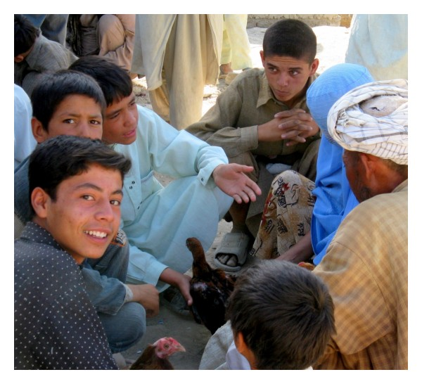 afghan children sell cherries