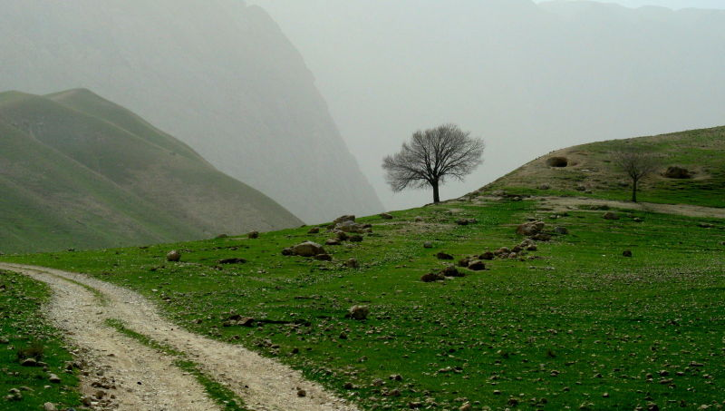 road to a green valley, NW of Afghanistan