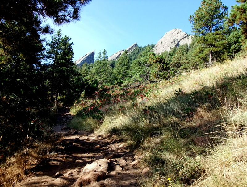 autumn flatirons  boulder  colorado