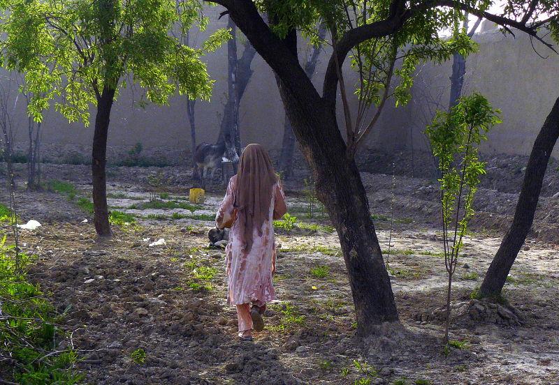 Afghan women walking through  garden