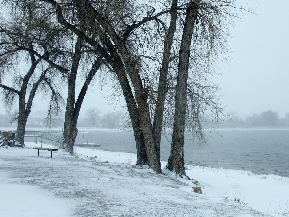 snow blizzard in Colorado