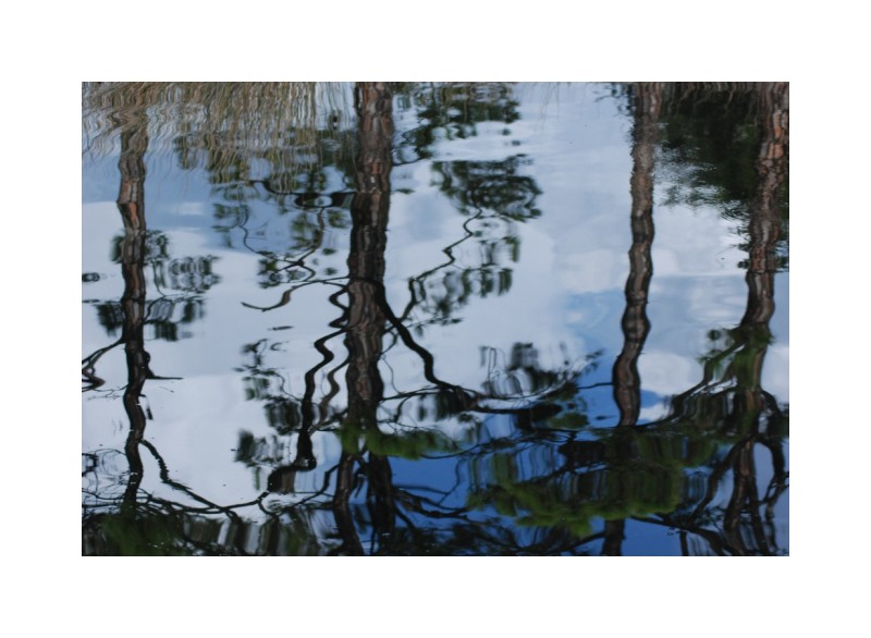 reflections SanBlas Panhandle