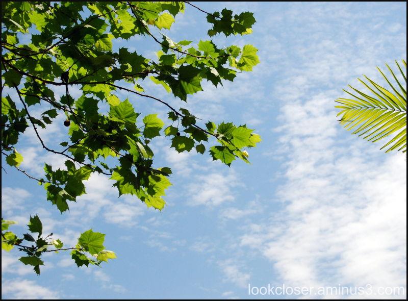 sky home clouds blue