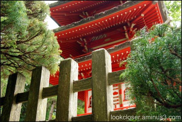 SF Golden Gate Park Japanese Tea Garden