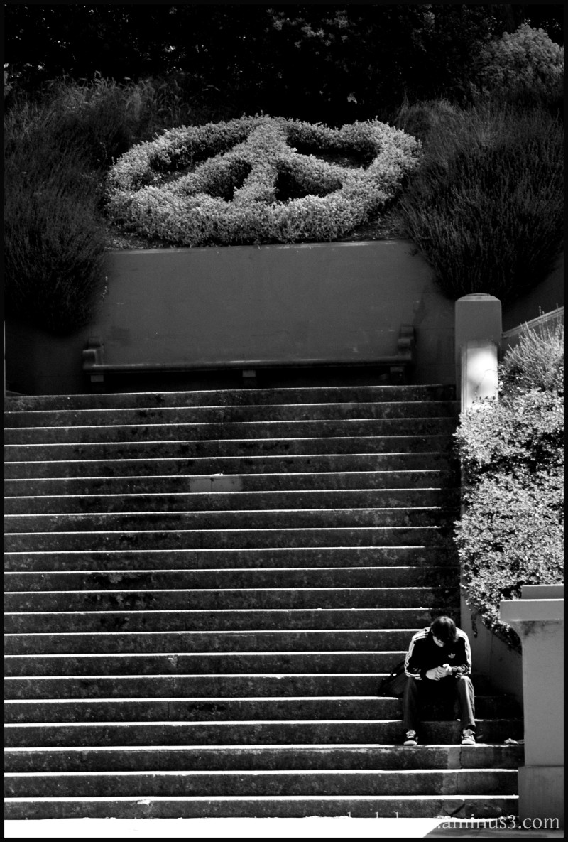 SF Peace Park People Stairs