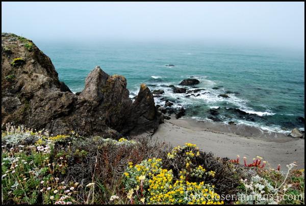 California Bodega Pacific Rocks