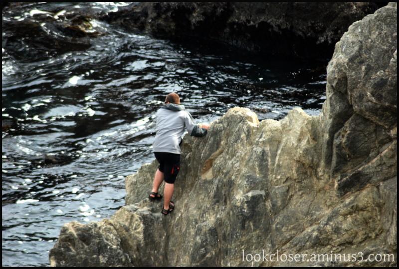CA Bodega Head rock climber