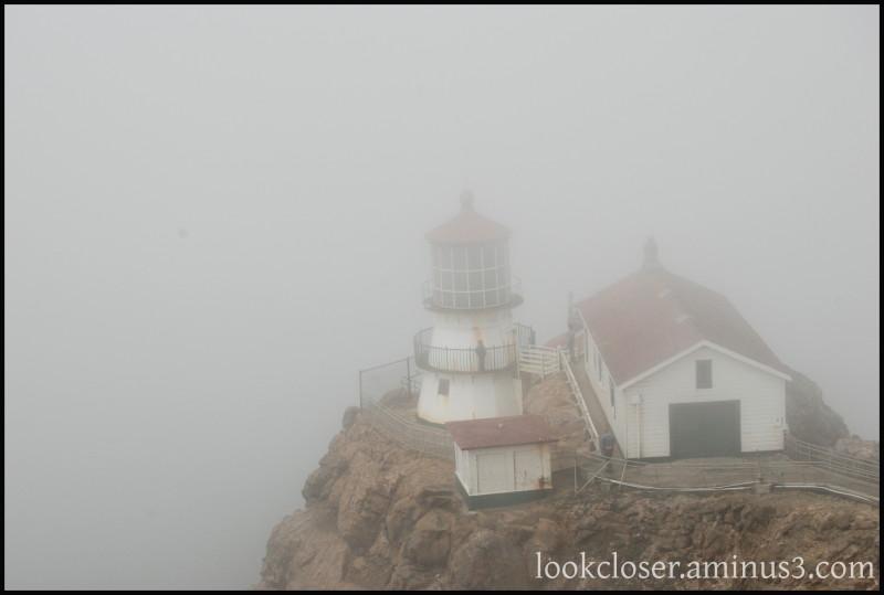 CA Pt.Reyes lighthouse