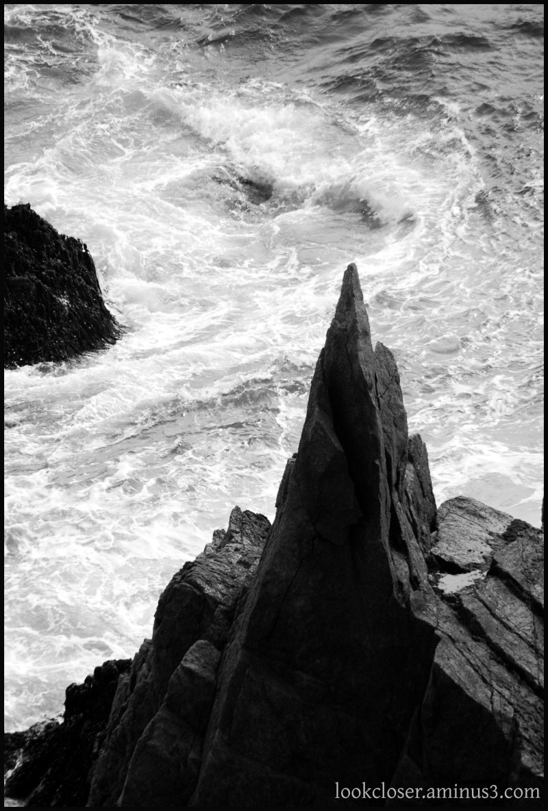 CA Pacific coast rock bw