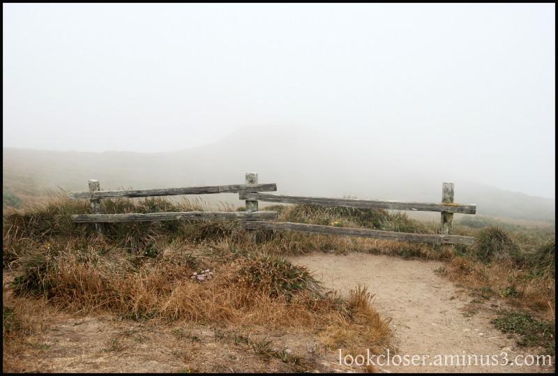 CA Pt.Reyes fence field fog