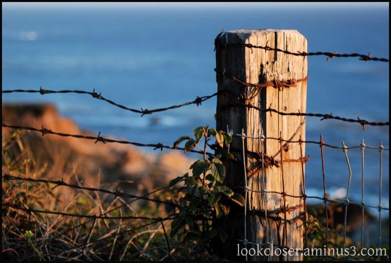 CA HWY1 coastline Pacific fencepost wire sunset