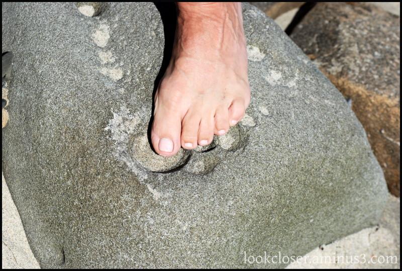 CA BigSur rocks toes