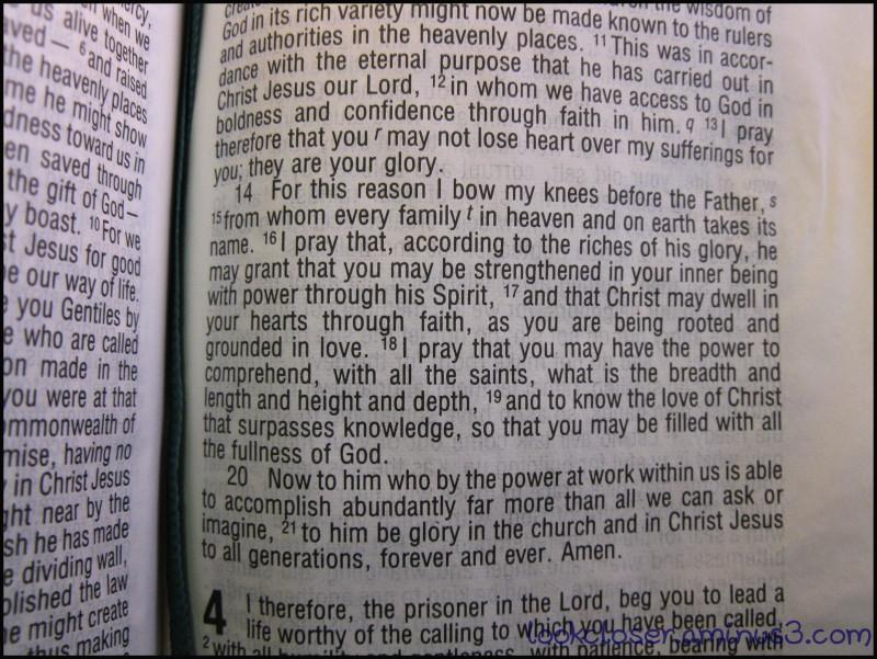 Bible-text