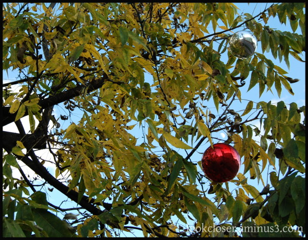 GA Dahlonega red Christmas ornament moon