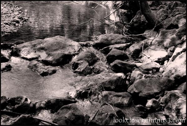 BW tint CA stream rocks