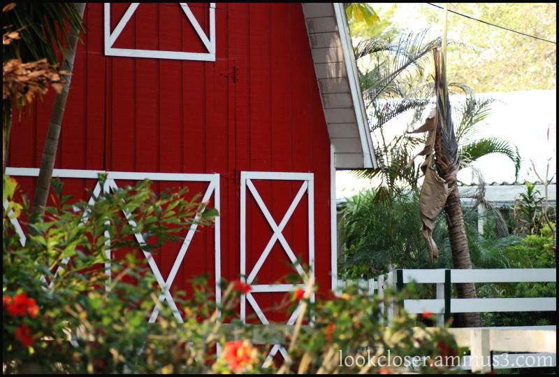 Neighborhood FL barn