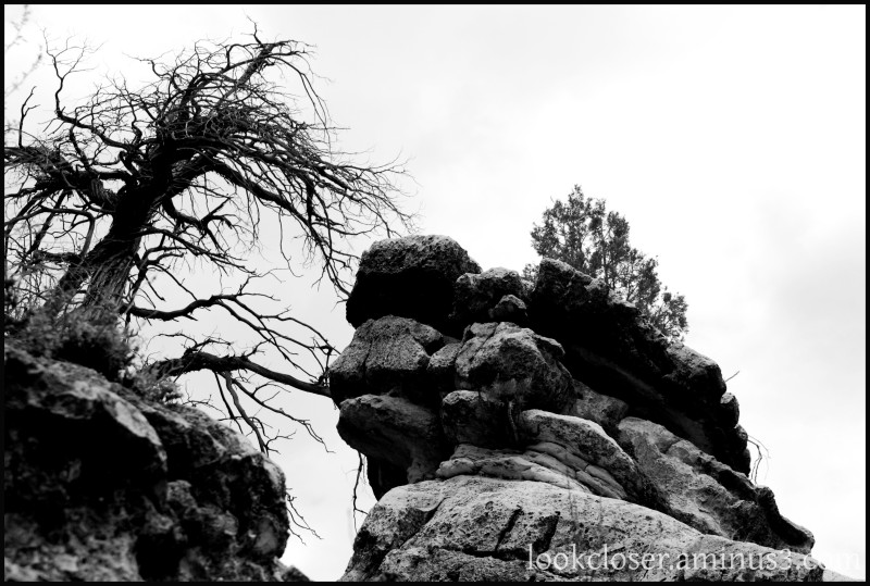 AZ WalnutCanyon West BW