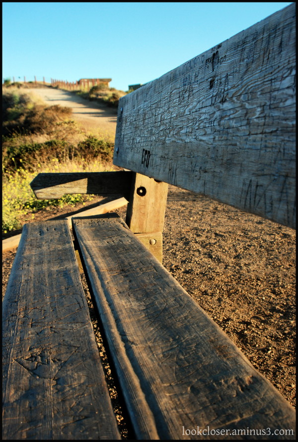 SF weathered bench