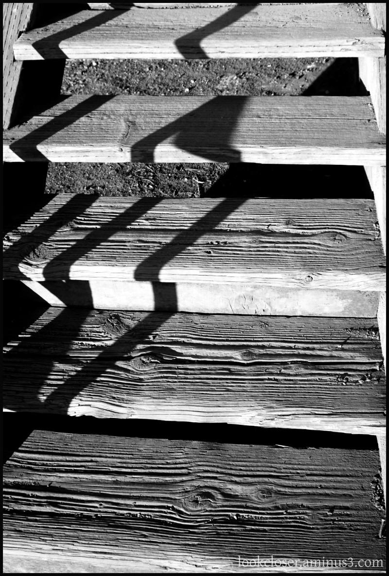 bw sf wood steps