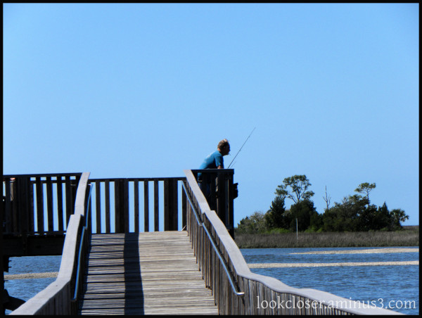 fisherman pier Cedarkey FL