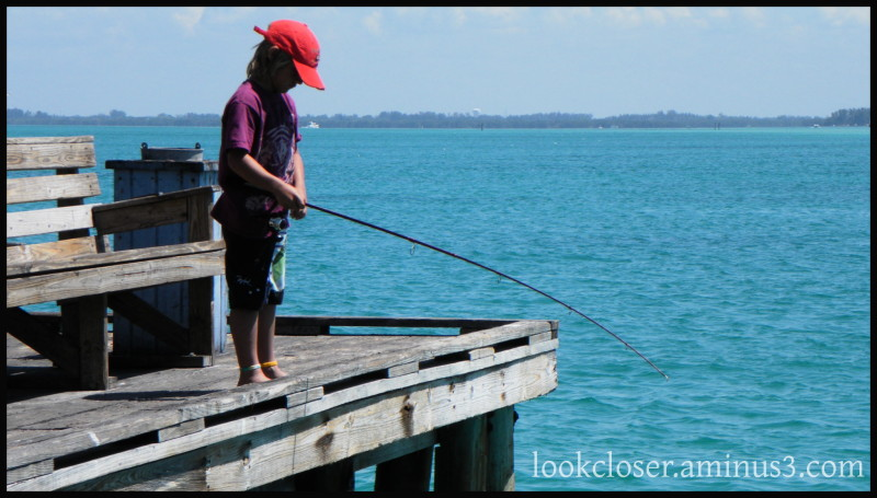 kid fishing bradenton fl