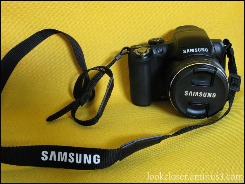 camera sammy
