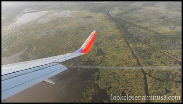 NOLA wetlands plane wing flying
