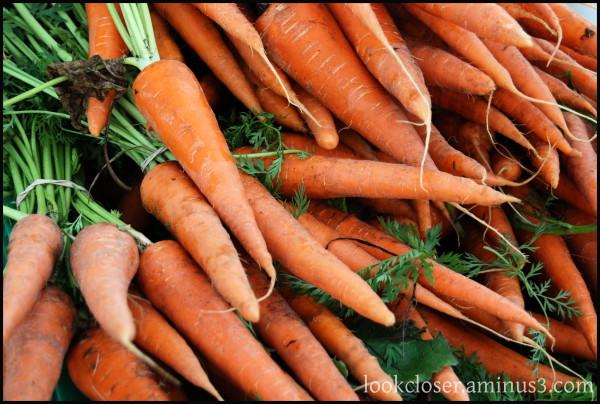 sarasota Am3 meetup carrots