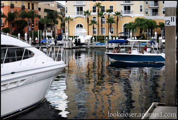Tampa Channelside reflections colors buildings wat