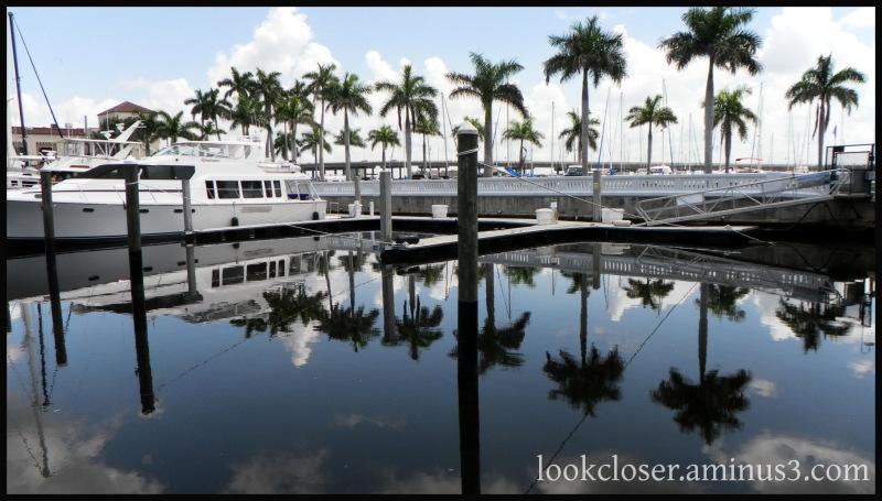 palms posts river bradenton reflections