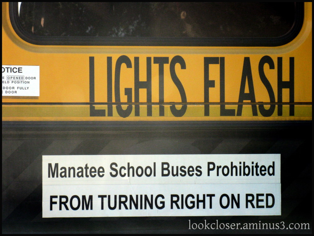 School bus yellow black letters