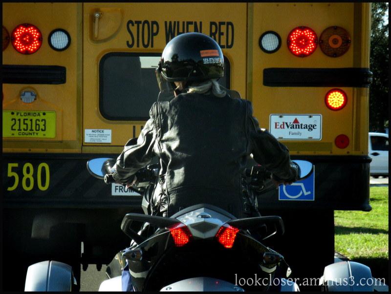 motorcycle schoolbus