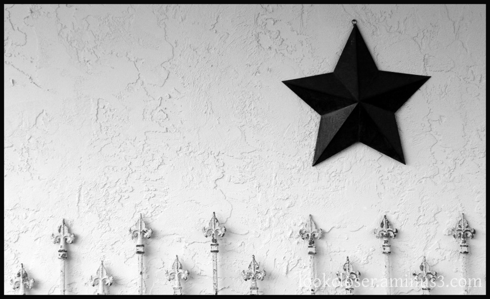 star fleur-di-lis wall texture bw