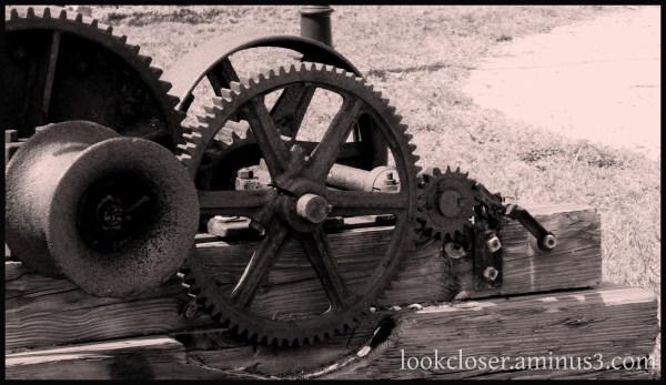 unused gears tinted