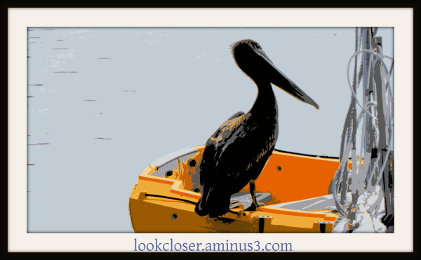 posterized pelican yellow boat framed